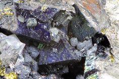 Bornite, Cu5FeS4, Arsenopyrite, FeAsS, Hingston Down Quarry, Gunnislake, Calstock, Callington District, Cornwall, England, UK. Fov 6 mm. Rather nice purple Bornite crystals with Arsenopyrite. Copyright: © J.I.G.R