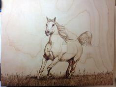 Pyrography Arabian Stallion by AdinBeg on DeviantArt