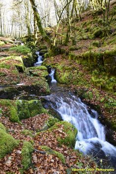 Les cascades de la Tine à Pradines en Corrèze Limousin, Planet Earth Ii, Les Cascades, Dordogne, World Cities, City Landscape, Aquitaine, Ten, Amazing Nature