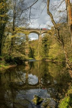 Bothal Viaduct