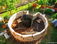 keyhole gardens from around the world -- raised garden surrounding compost bin that continually leaches nutrients into the garden.  Tons of examples and info here.