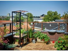Juliana City Greenhouse - perfect choice for balcony Garden Inspiration, Interior Inspiration, Pet Water Fountain, Lots Of Money, Balcony, Wells, Planting, This Is Us, Recycling