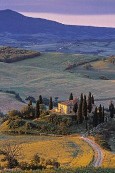 Numerous vineyards and beautiful stone cottages in gorgeous Tuscany