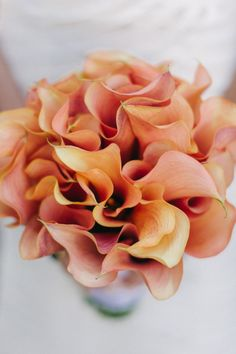 Coral Passion Calla Lily - Photography by Judy Pak + Brklynview (Assistant Photographer) - 20 Single Bloom Bouquets We Love - Style Me Pretty Calla Lily Bouquet, Calla Lillies, Flower Bouquets, Bride Bouquets, Wedding Flowers, Wedding Dresses, Lily Wedding, Blush Flowers, Orange Wedding