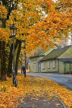 Tartu, Estonia via kami and the rest of the world: breathtaking autumn in Estonia