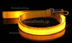 Becky®犬用LED発光リード最安値通販- DentalTools.JP