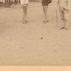Dierenziekenhuis bij een Brits militair kamp bij Naauwpoort in Zuid-Afrika, Underwood and Underwood, 1900 - Boer War-Collected Works of Tumbalong - All Rijksstudio's - Rijksstudio - Rijksmuseum Armed Conflict, War