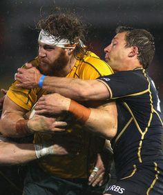 Scotland succeeded in humiliating the Wallabies for the second time in three seasons when they smacked them in the slosh with a last-minute penalty goal, enabling them to win in atrocious conditions. International Rugby, Cycling Shorts, Scotland, Fictional Characters, Sports, Fantasy Characters, Cycling Tights