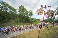 San Vito di Cadore - Vedelago - Giro d'Italia 2012