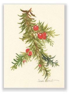 Merry Berry Christmas Holiday Watercolor Greeting Card Susie Short