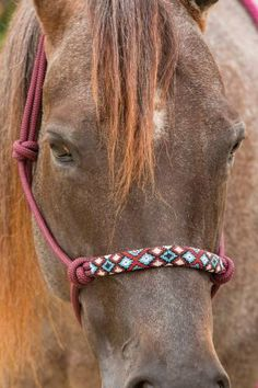 Professional's Choice Beaded Rope Halter Professional's Choice Beaded Rope Halter, halters – Hay River Tack and Supplies - Art Of Equitation Rope Halter, Western Horse Tack, Western Saddles, Horse Saddles, Barrel Racing Tack, Westerns, Horse Halters, Horse Accessories, Equestrian Outfits