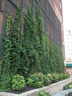 08 jardines verticales mallas