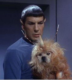 Spock holding a dog with a unicorn horn. Your argument is invalid.