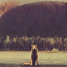 Prisma dog (mononoke)