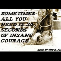 20 seconds.. Barrel Racers have that insane courage