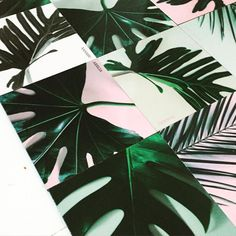 Plant your home with these cool tiles from Le Square #newtiles #newcollection #new #tiles #tilecrush #tileaddiction #fliser #kakler #homedecoration #lifestyle #boliginspiration #indretning #interiør #interior #interiordesign #ihavethisthingwithtiles #plants #leaves #blade #planter #cph #lesquare #lesquarecph by lesquarecph