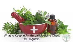 What to keep in your herbal medicine chest. These basics are great for anyone, especially those new to natural medicine. The Homesteading Hippy