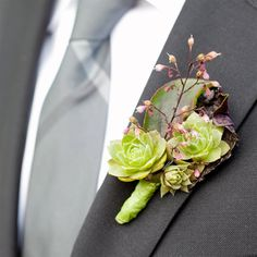 Green Succulent Boutonniere