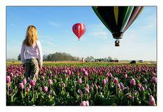 Go on a Hot Air Ballon ride!
