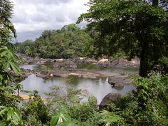 Raleighvallen, Suriname
