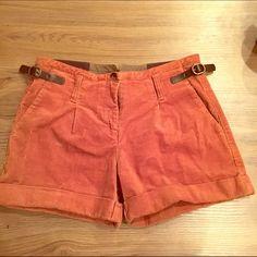 High waisted corduroy burnt brown  shorts Super slim fitting high waisted winter shorts Gianni Bini Shorts