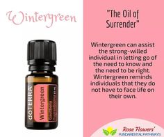 Wintergreen is so amazing for sore muscles and joints but Wintergreen can emotionally support you in letting go of the need to always be right. Say what?!?! Diffuse this around the office know-it-all.  #essentialoils