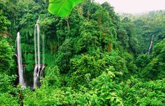 11 Amazing Things You Need To See And Do In Bali On Your First Visit (7)