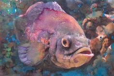 Fine Art Print Fish Art Watercolor Purple by PowellArtAndDesign