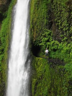 One of Oregon's best-kept secrets, a lush waterfall with a tunnel behind it for hikers. Tunnel Falls on Eagle Creek Trail (Columbia River Gorge, Oregon)