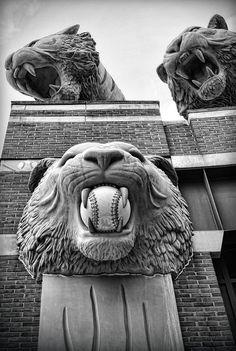 detroit tigers logo stencil download logo of detroit