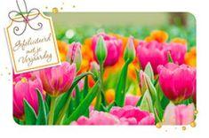 """Verjaardagskaart met veld tulpen en label met opschrift: """"Gefeliciteerd met je Verjaardag"""" Paper Board"""