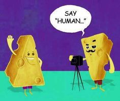 This is funny! Cheesy Jokes, Corny Jokes, Laughing Quotes, Quotes About Photography, Funny Pins, Funny Stuff, Just For Laughs, Super Funny, Funny People