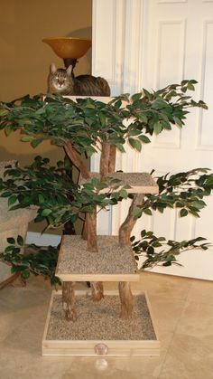 Kit-ty Tree Deluxe with Topper Assembly Cat Tree Kit Cat Tree House, Cat Tree Condo, Cat Condo, Tree Houses, Large Cat Tree, Diy Cat Tree, Cat Trees, Tortoise Care, Tree Plan
