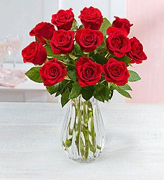 12 Months of Roses Giveaway