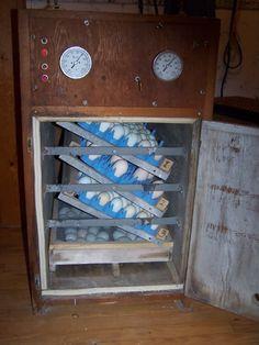 Cabinet Incubator Egg Turner Chickens Pinterest