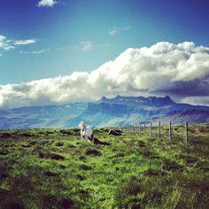#Snæfellsnesið,  #Islandia #Iceland