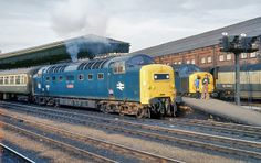 55 001 55001 St Paddy at the head of the Edinburgh - Kings Cross, at York. Electric Locomotive, Diesel Locomotive, Steam Locomotive, Train Pictures, World Pictures, Railroad Pictures, Train Art, Electric Train, British Rail