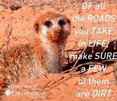 Of all the roads you take in life, make sure a few of them are dirt! #traveltuesday
