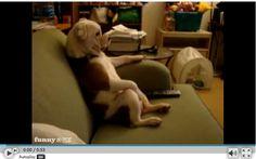 sofa time...