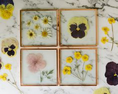 Set of 4 Pressed Flower Coasters, Spring Garden (glass and copper) | botanical home decor by kmpressed on Etsy (null)
