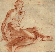 Nude Study - Annibale Carracci