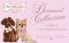 Diamond collectie For Pets Only verkrijgbaar bij www.LollyPopDogcouture.be