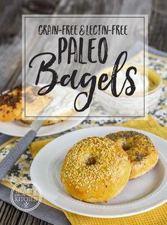 Paleo Bagels {Grain-Free, Lectin-Free & Plant Paradox Friendly}