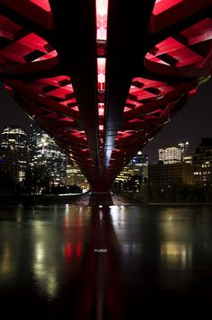 #Peace Bridge Calgary, AB. #Calgary #Alberta #Canada #Photography #Night