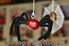 Kastanje edderkop fra min blog: http://agnesingersen.dk/blog/kastanjeedderkoppen/ Chestnut Kastanie