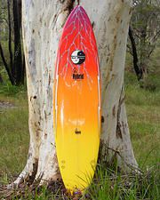 Robert Fenech Designs Surfboard Shaper