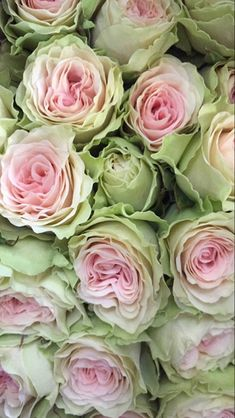 Birth Flowers, Leaf Flowers, Flowers Nature, Fall Flowers, Wedding Flowers, Beautiful Flowers Garden, Beautiful Flower Arrangements, Pretty Flowers, Floral Arrangements