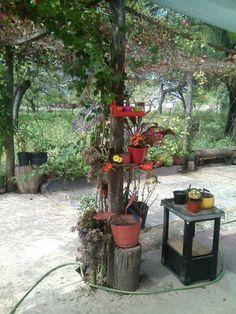 Patio, Outdoor Decor, Plants, Home Decor, Flowers, Decoration Home, Room Decor, Plant, Home Interior Design