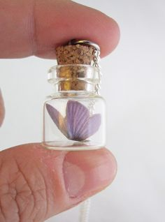 Tiny Purple Butterfly Bottle Necklace by egyptianruin on Etsy https://www.etsy.com/listing/163507824/tiny-purple-butterfly-bottle-necklace