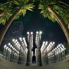 LACMA at night, Los Angeles, California